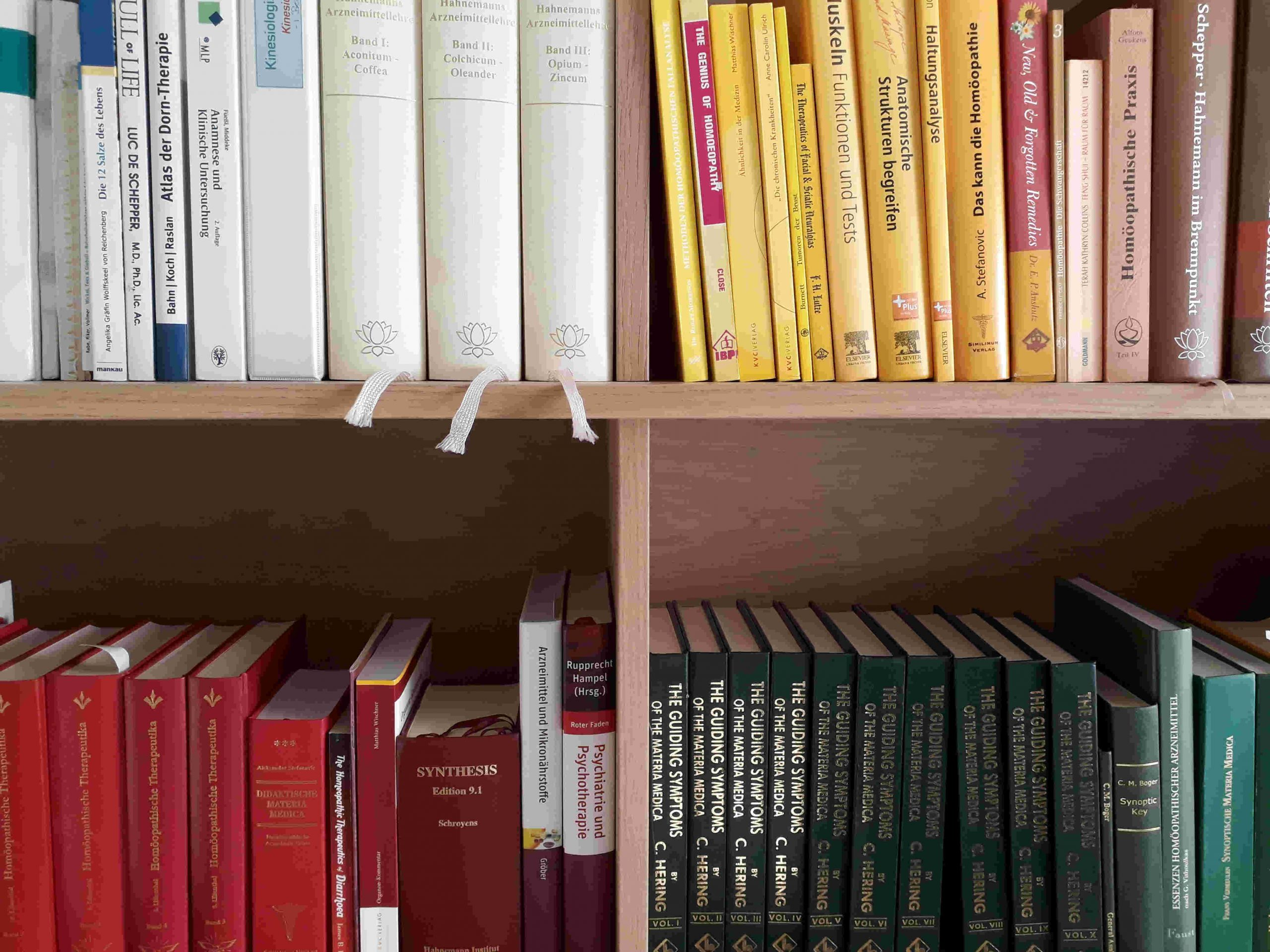 Bücher in meinem Regal